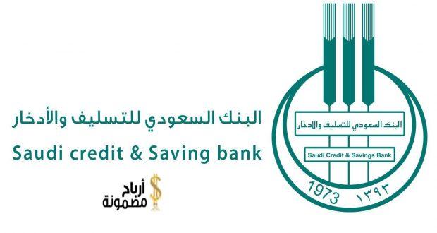 قرض بنك التسليف للمشاريع