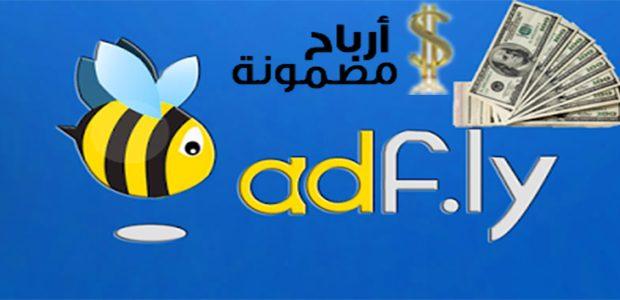 طريقة الربح من موقع adf.ly وطرق لزيادة الارباح
