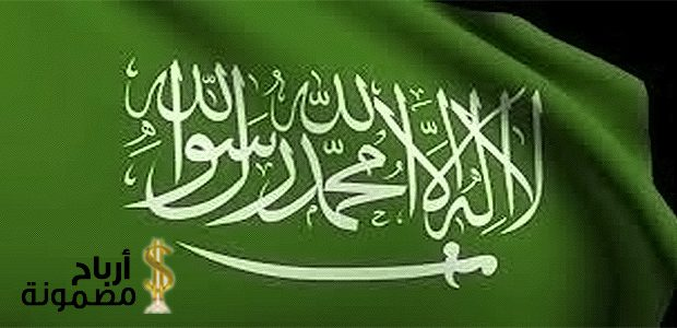 فكرة مشروع ناجح في السعودية