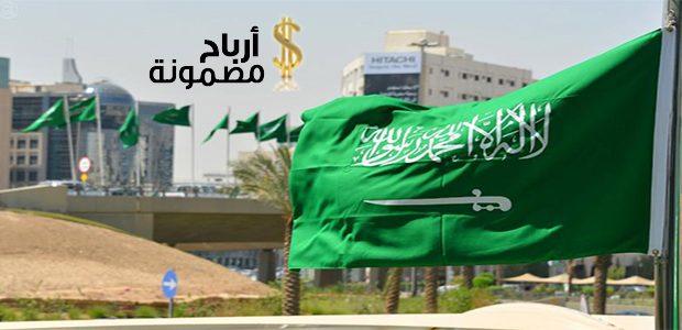 مشروع صغير مربح في السعودية