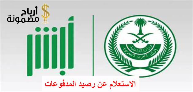 Photo of الاستعلام عن رصيد المدفوعات برقم الإقامة أو رقم الهوية أو رقم الحدود